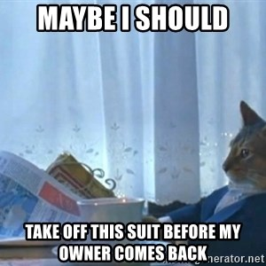 newspaper cat realization - Maybe i should  take off this suit before my owner comes back