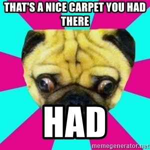 Perplexed Pug - That's a nice carpet you had there HAD