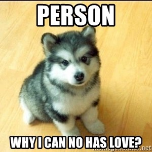 Baby Courage Wolf - person why i can no has love?