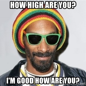 Snoop lion2 - How high are you? I'm good how are you?