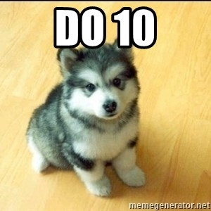 Baby Courage Wolf - DO 10