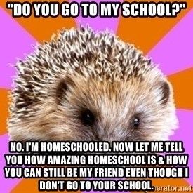 "Homeschooled Hedgehog - ""DO you go to my school?"" no. I'm homeschooled. now let me tell you how amazing homeschool is & how you can still be my friend even though I don't go to your school."