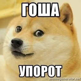Real Doge - Гоша упорот