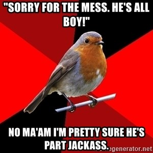 "Retail Robin - ""Sorry for the mess. He's all boy!"" No Ma'am I'm pretty sure he's part jackass."