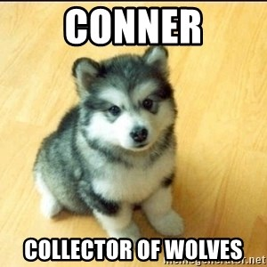 Baby Courage Wolf - Conner Collector of Wolves