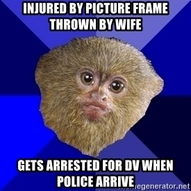 MRA Marmoset - injured by picture frame thrown by wife gets arrested for dv when police arrive