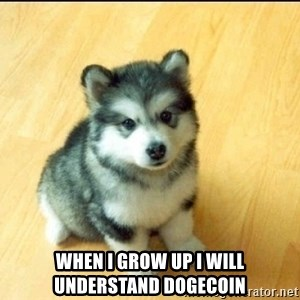 Baby Courage Wolf -  when i grow up i will understand dogecoin
