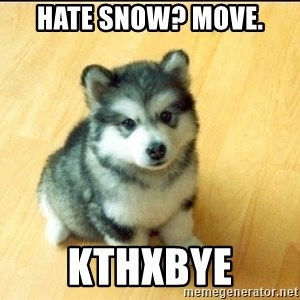 Baby Courage Wolf - HATE SNOW? MOVE. KTHXBYE