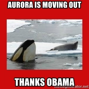 Thanks Obama! - Aurora is moving out thanks obama