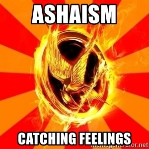 Typical fan of the hunger games - Ashaism  Catching feelings