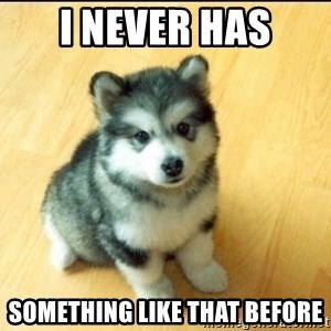 Baby Courage Wolf - i never has something like that before