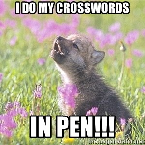 Baby Insanity Wolf - I do my crosswords in pen!!!