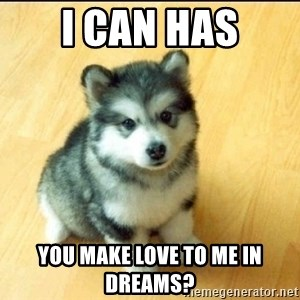 Baby Courage Wolf - i can has you make love to me in dreams?