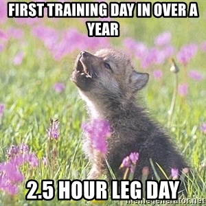 Baby Insanity Wolf - First training day in over a year 2.5 hour leg day