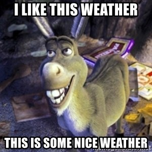 Donkey Shrek - I like this weather This is some nice weather