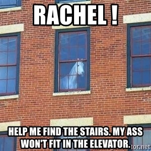 window horse - Rachel ! help me find the stairs. My ass won't fit in the elevator.