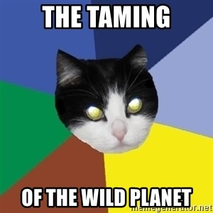 Winnipeg Cat - the taming of the wild planet