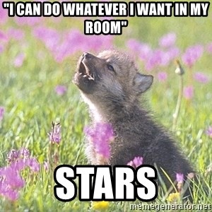 "Baby Insanity Wolf - ""I can do whatever i want in my room"" Stars"