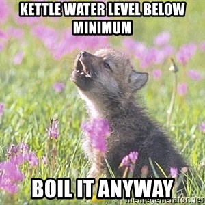 Baby Insanity Wolf - kettle water level below minimum boil it anyway