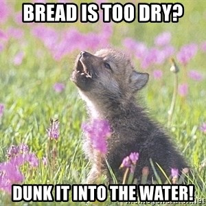 Baby Insanity Wolf - bread is too dry? dunk it into the water!