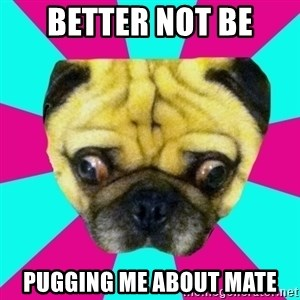 Perplexed Pug - better not be pugging me about mate