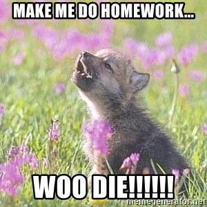 Baby Insanity Wolf - make me do homework... WOO DIE!!!!!!