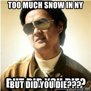 mr chow123 - Too much snow in ny BUT DID YOU DIE???