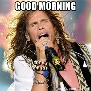 Steven Tyler - Good morning