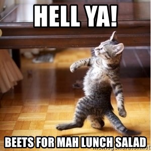 haters gonna hate cat - Hell ya! Beets for mah lunch salad