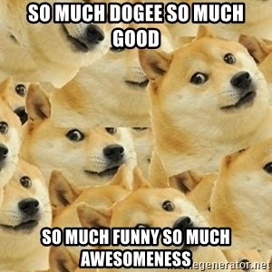 so dogeee - SO MUCH DOGEE SO MUCH GOOD SO MUCH FUNNY SO MUCH awesomeness