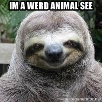 Sexual Sloth - im a werd animal see