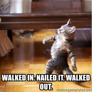 walking cat -  walked in. nailed it. walked out.
