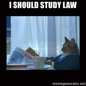 i should buy a boat cat - I SHOULD STUDY LAW