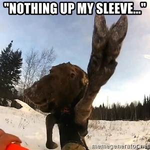 "Peace Out Moose - ""NOTHING UP MY SLEEVE..."""