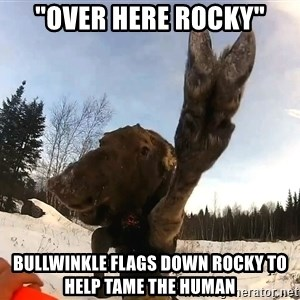 """Peace Out Moose - """"over here rocky"""" bullwinkle flags down rocky to help tame the human"""
