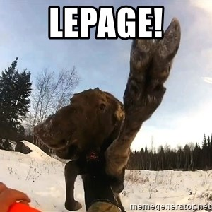 Peace Out Moose - Lepage!