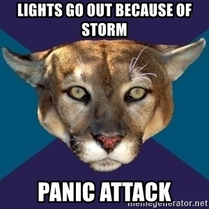 PTSD PUMA - LIGHTS GO OUT BECAUSE OF STORM panic attack
