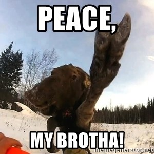Peace Out Moose - Peace, my Brotha!