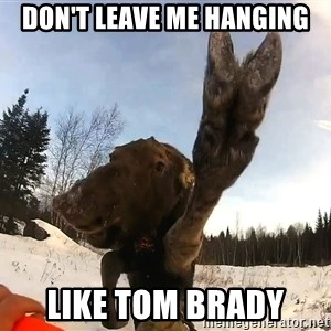Peace Out Moose - Don't leave me hanging Like Tom Brady