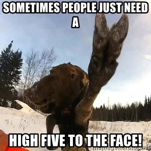 Peace Out Moose - Sometimes people just need a High five to the face!