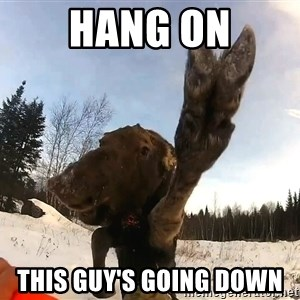 Peace Out Moose - HANG ON THIS GUY'S GOING DOWN