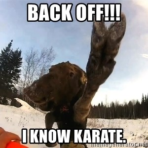 Peace Out Moose - BACK OFF!!! I know Karate.
