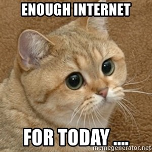 motherfucking game cat - ENOUGH INTERNET FOR TODAY ....
