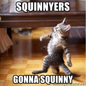 haters gonna hate cat - SQUINNyers gonna squinny