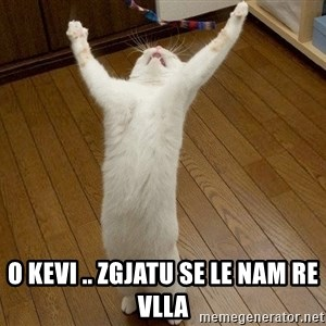 praise the lord cat -  o kevi .. zgjatu se le nam re vlla