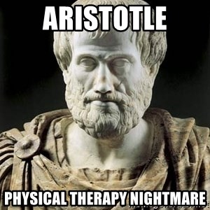 Aristotle - aristotle physical therapy nightmare