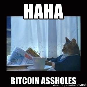 i should buy a boat cat - haha bitcoin assholes