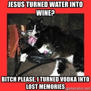bitch please - Jesus turned water into wine? Bitch please, I turned vodka into lost memories
