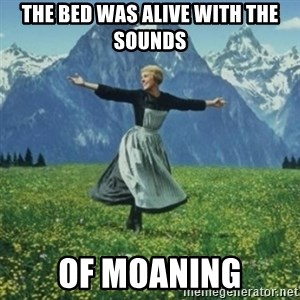 sound of music - The bed was alive with the sounds of moaning
