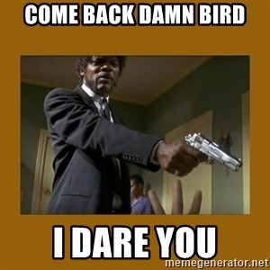 say what one more time - come back damn bird i dare you